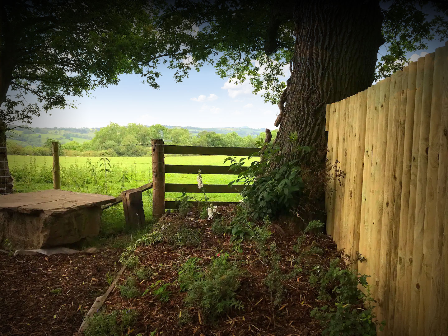 View from The Cider Shack