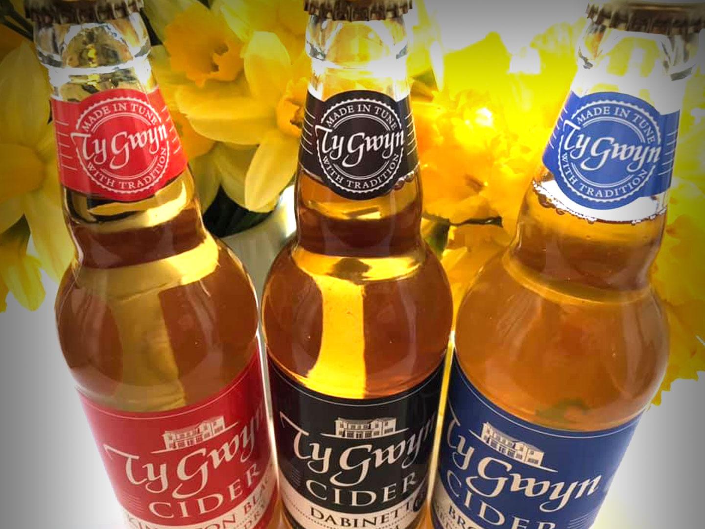 Bottles of Ty Gwyn Cider